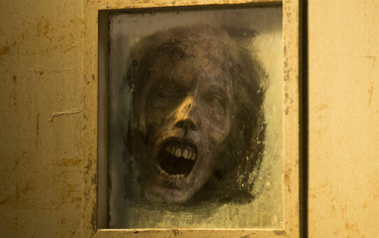 Review | The Walking Dead (6x13) - The Same Boat