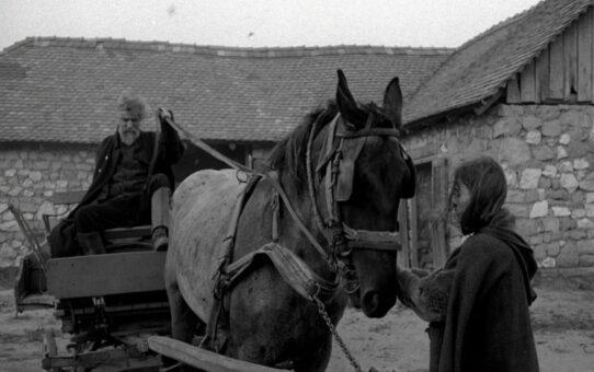 Crítica | O Cavalo de Turim (2011)