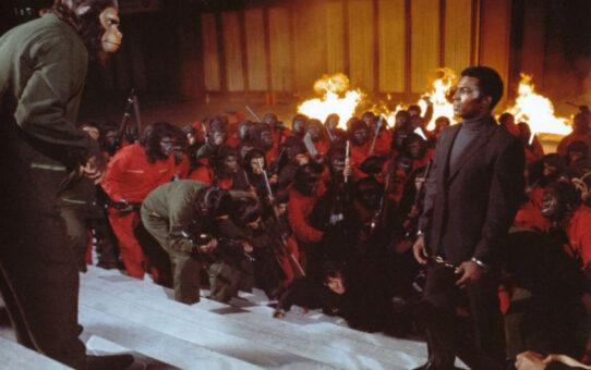 Crítica | A Conquista do Planeta dos Macacos (1972)
