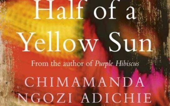 Resenha de Livro | Meio Sol Amarelo