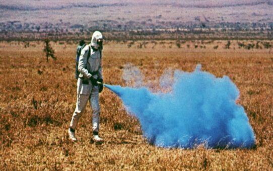 Sci-Fi | Phase IV (1974)